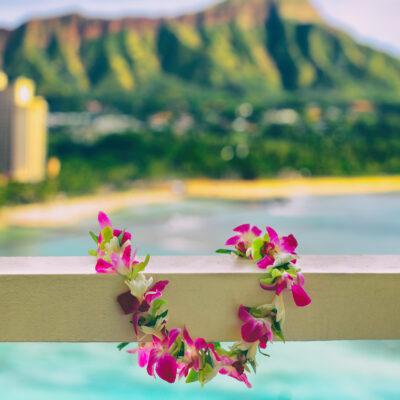 Lei near Wakaki Beach in Hawaii.