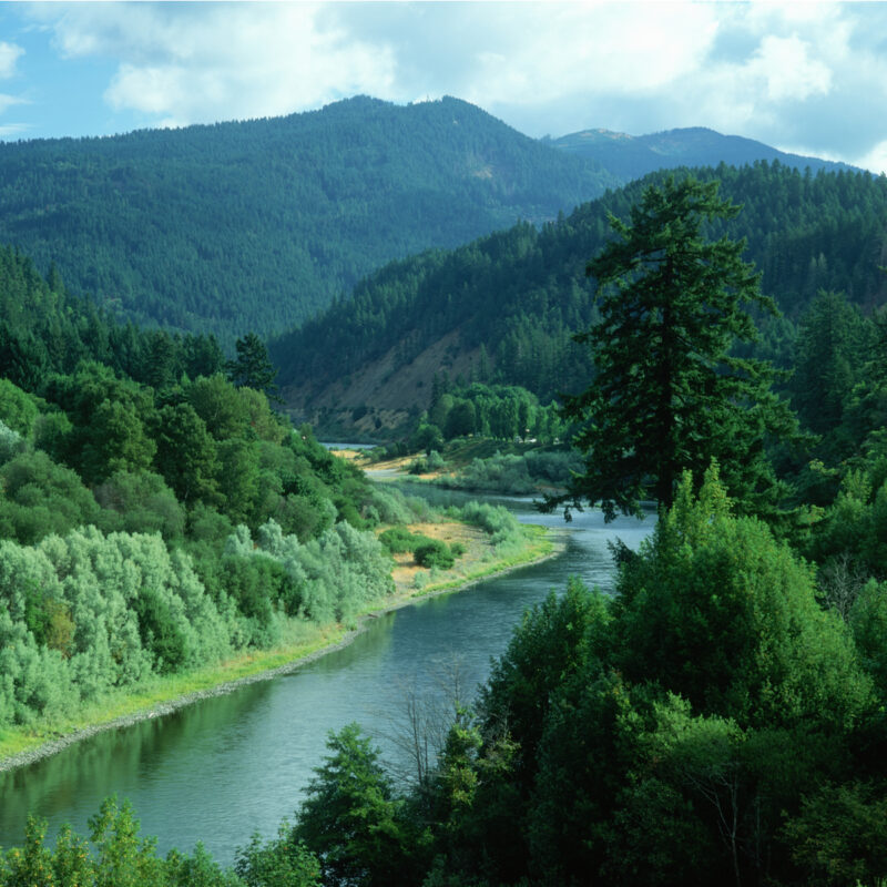 Rogue River in southern Oregon.
