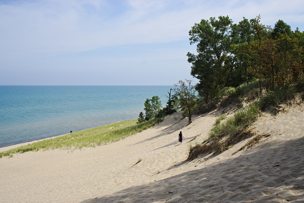 sand dunes in Indiana Dunes National Park