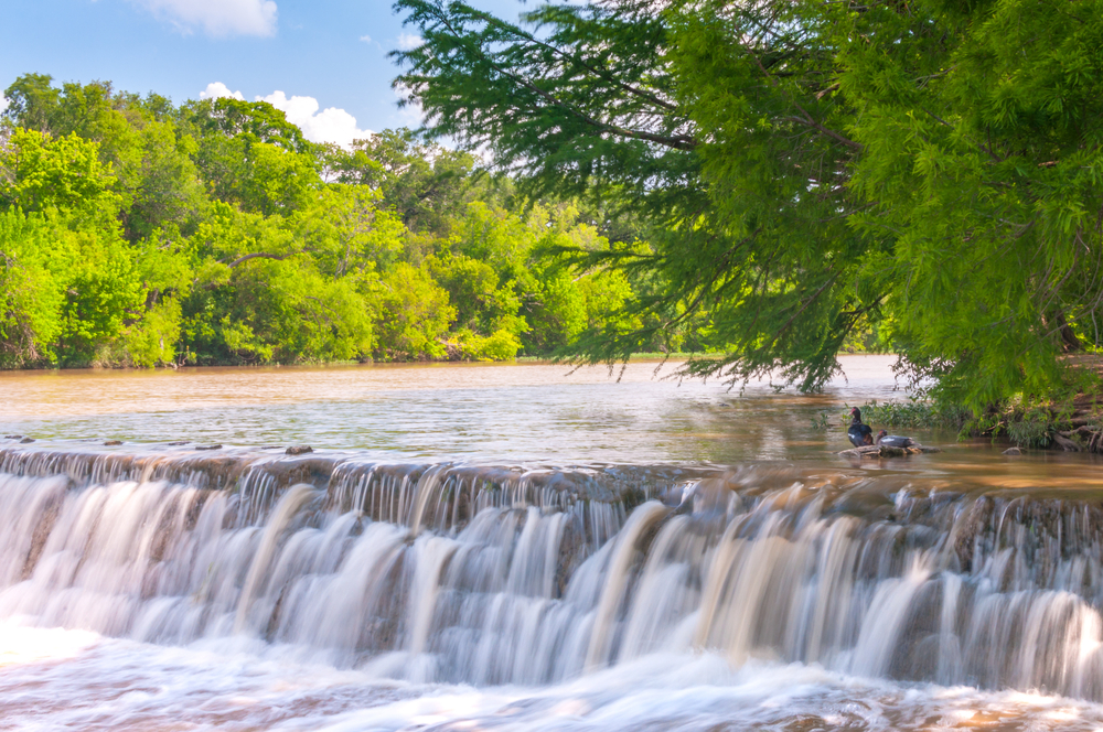 Blanco River State Park near Austin, Texas.