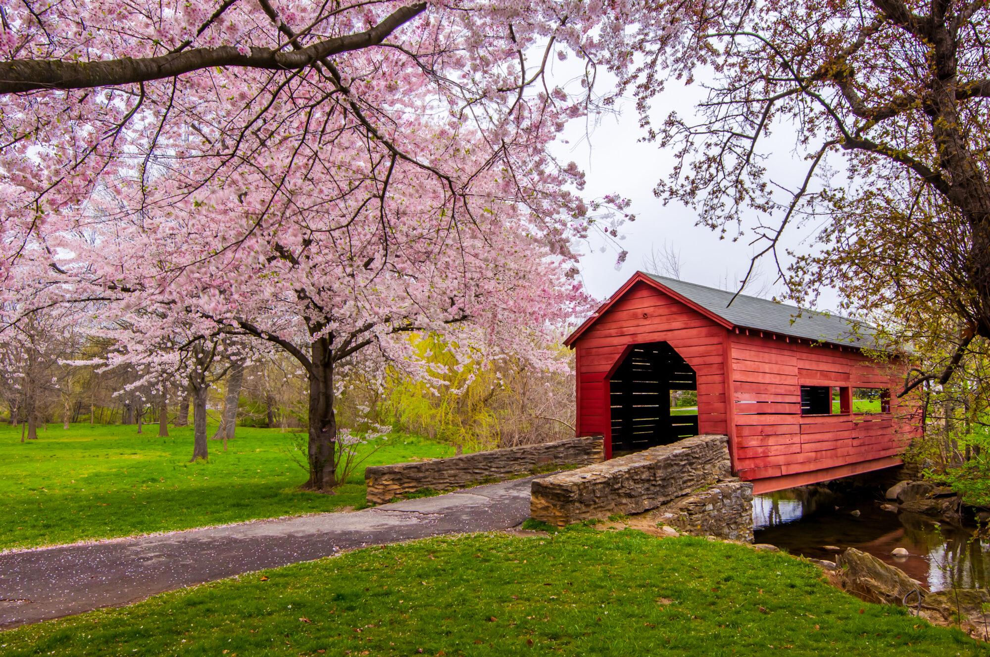 Carroll Creek Covered Bridge, Frederick, Maryland.