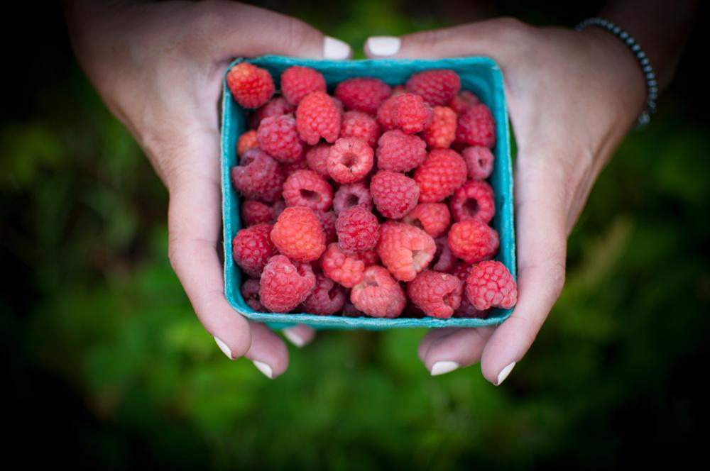 Raspberries in Canada.