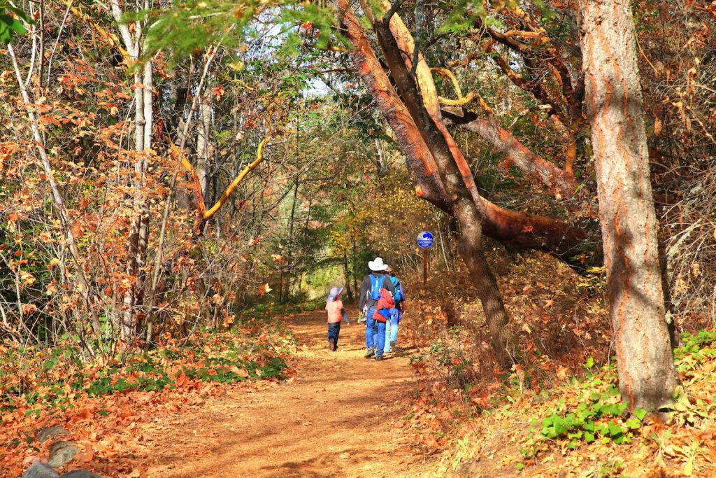 Sentiers du parc Lithia à Ashland, Oregon.