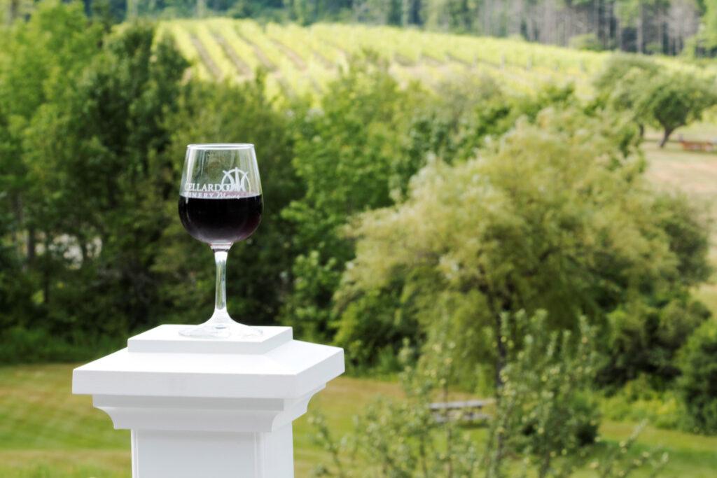 Glass of wine and vineyard at  Cellardoor Winery in Portland, Maine.