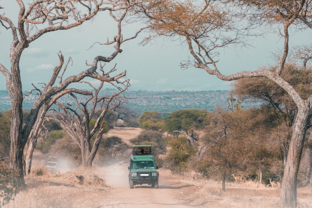 Serengeti National Park in Tanzania.