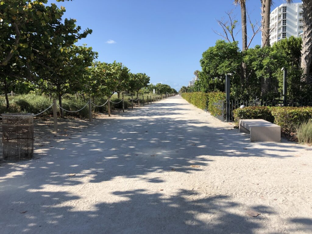Walking Path Adjacent To The Ocean.