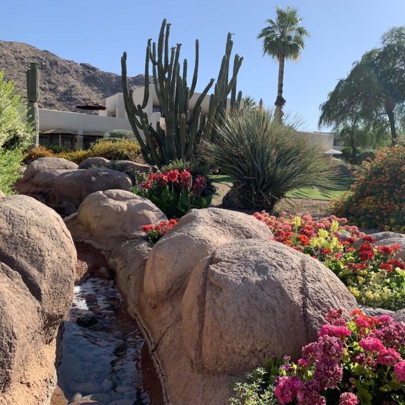 Scottsdale Scenery