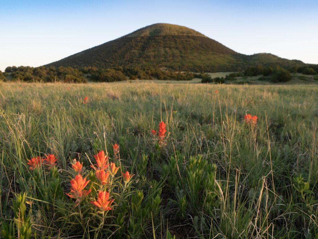 Capulin volcano, Capulin Volcano National Park, New Mexico.