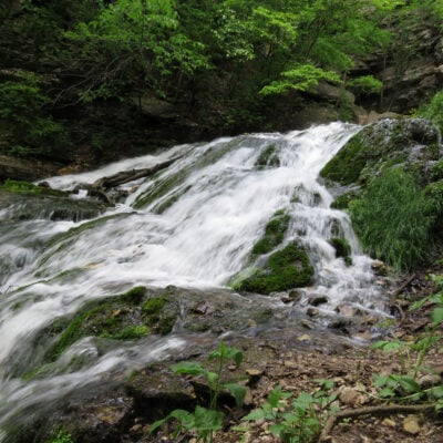 Dunnings Springs in Decorah, IA