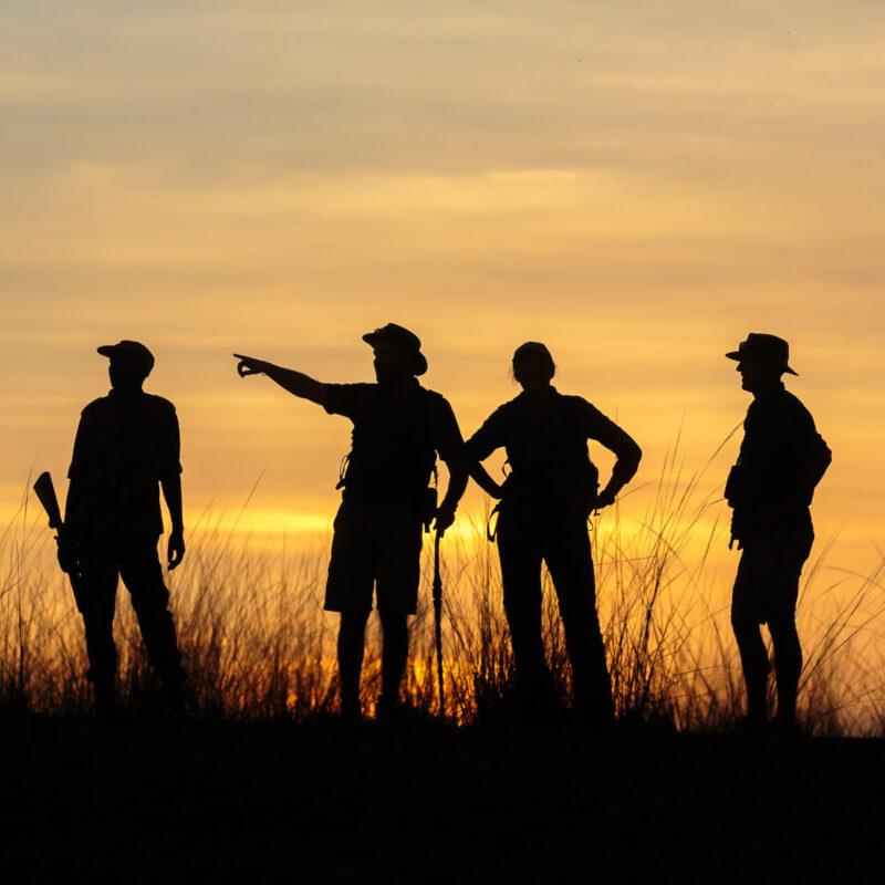 Silhouette of private safari group.