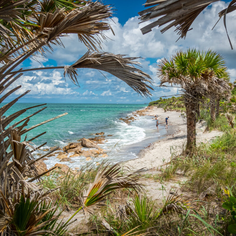 Sunny summer day at Caspersen Beach on the Gulf of Mexico in Venice Florida in the United States