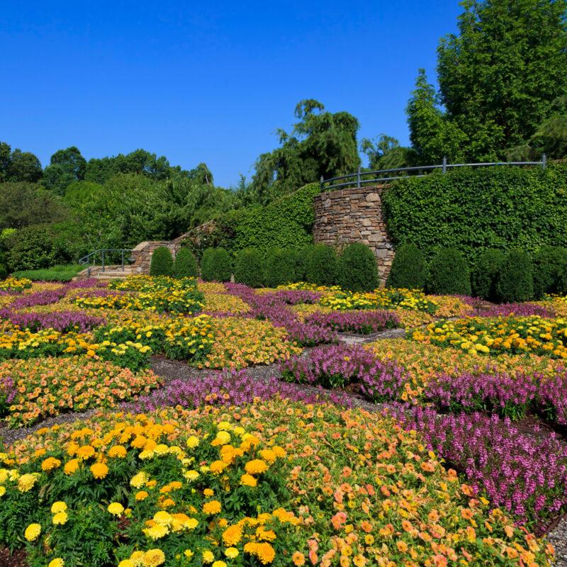 Patterned Quilt Garden in Asheville North Carolina