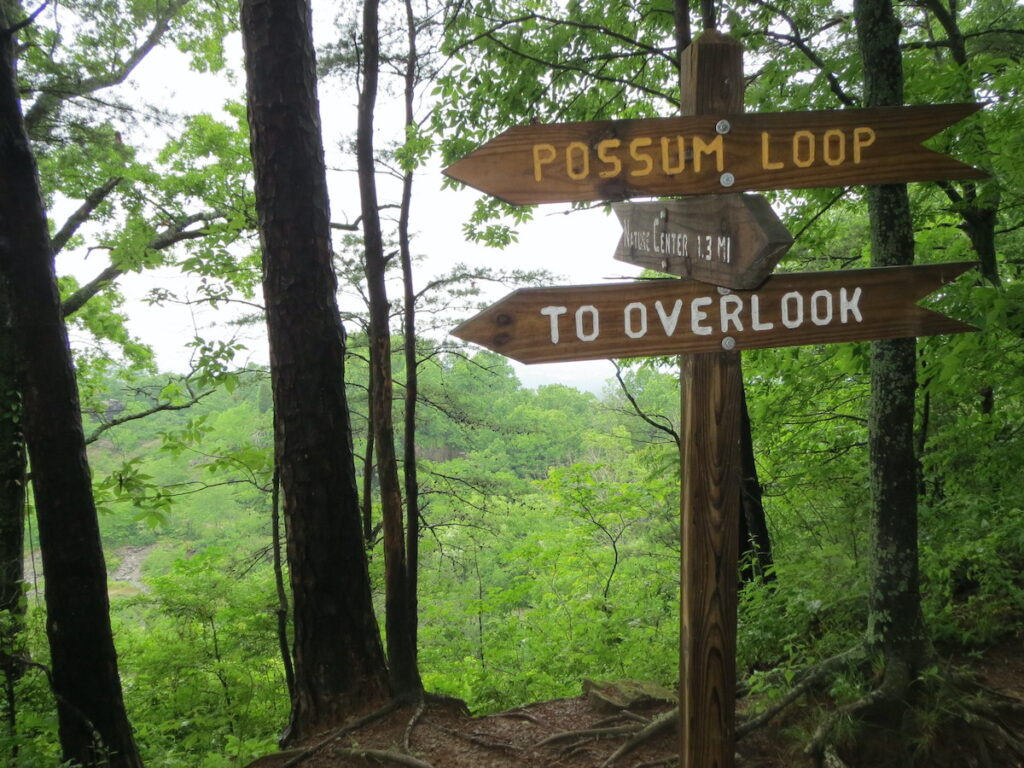 The trails at Ruffner Mountain are well marked.