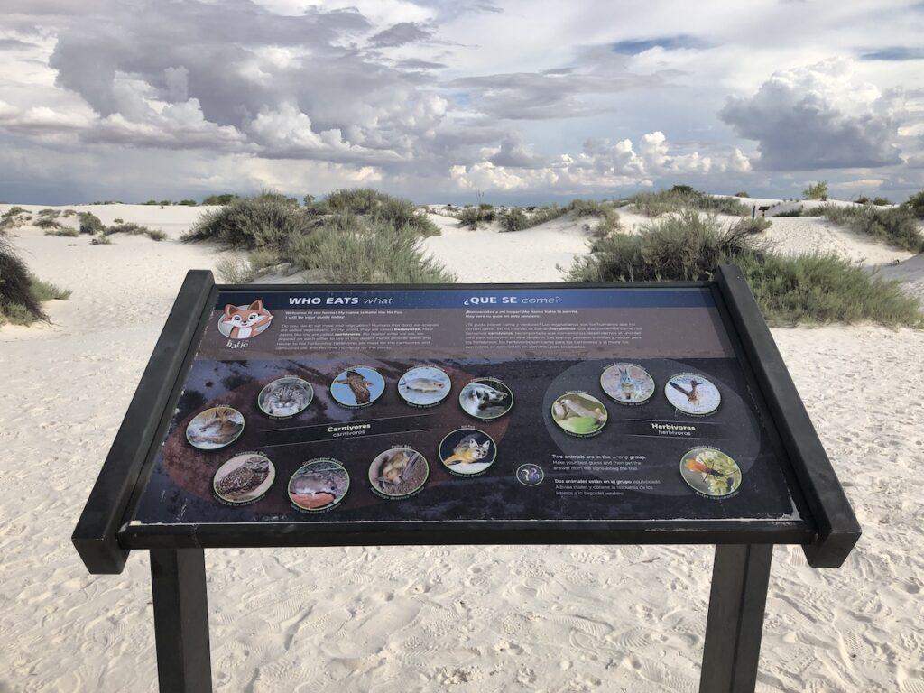 Dune Life Nature Trail interpretive sign, White Sands National Park, New Mexico.