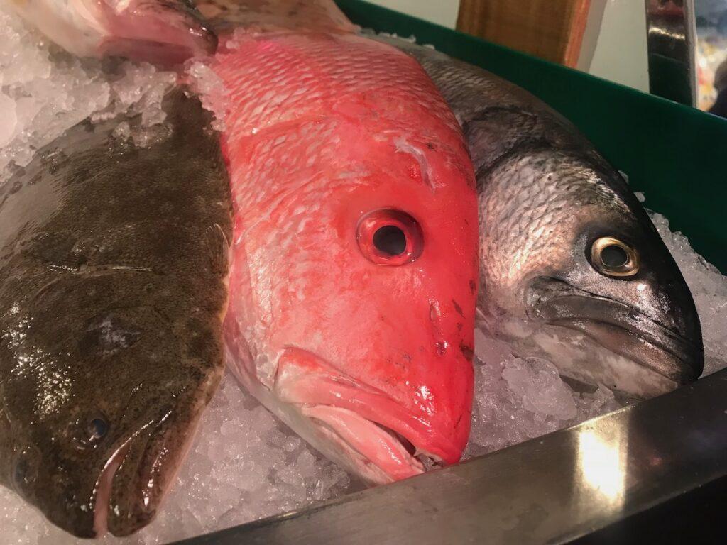 Fresh-caught fish in Louisiana