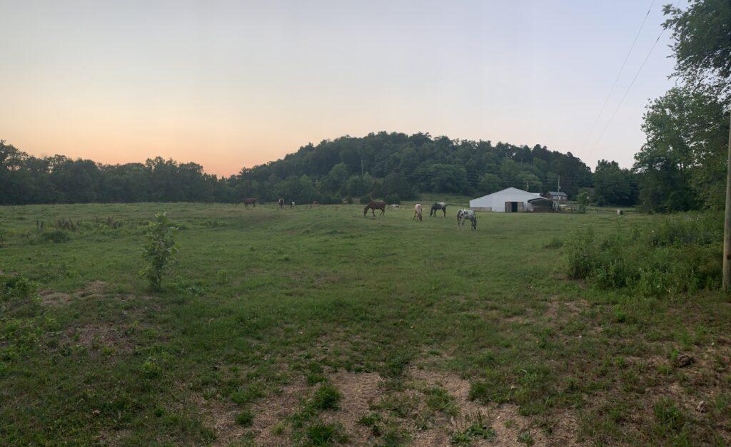 sunset over horse pasture at Missouri campsite
