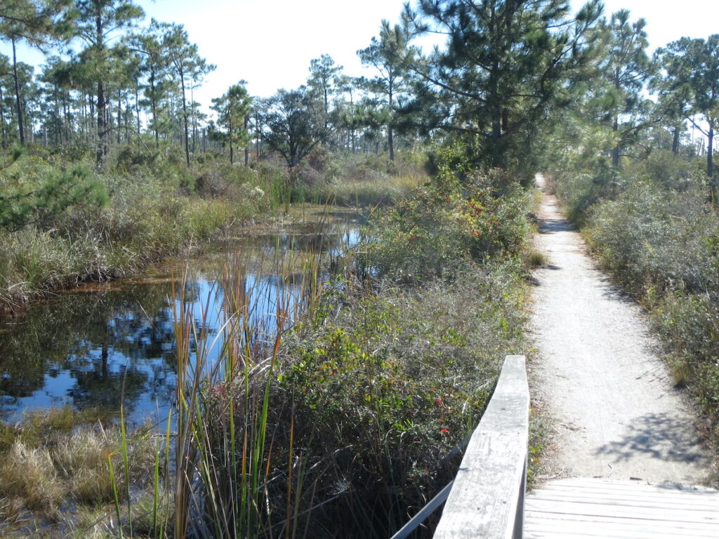 Crossing a bayou on the way to Fort Pickens.