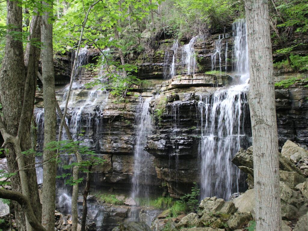 Bethel Spring Nature Conservation i Huntsville, Alabama.
