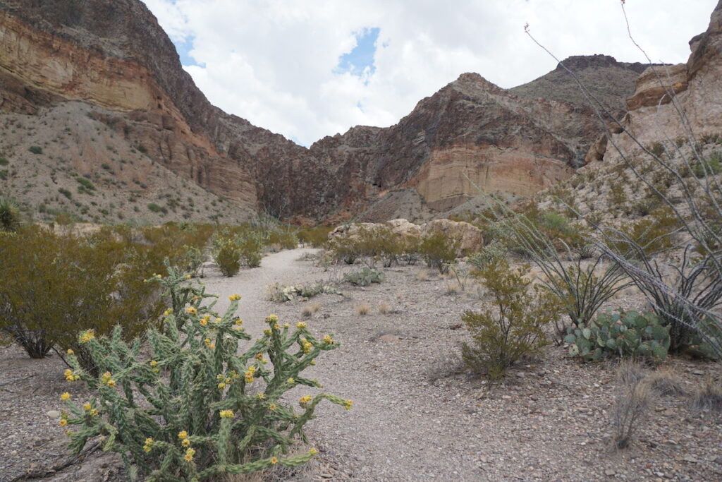 Lower Burro Mesa pour-off trail in Big Bend National Park.