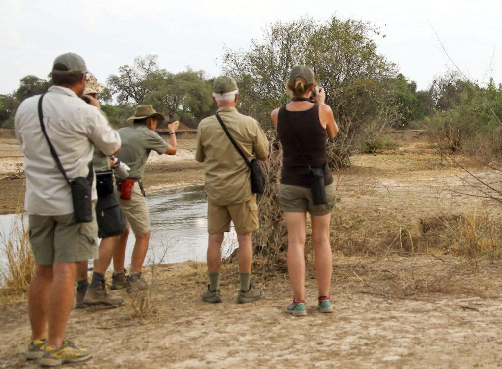 Walking safari, South Luangwa National Park