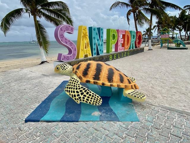 San Pedro play area in Belize. Model sea turtle.