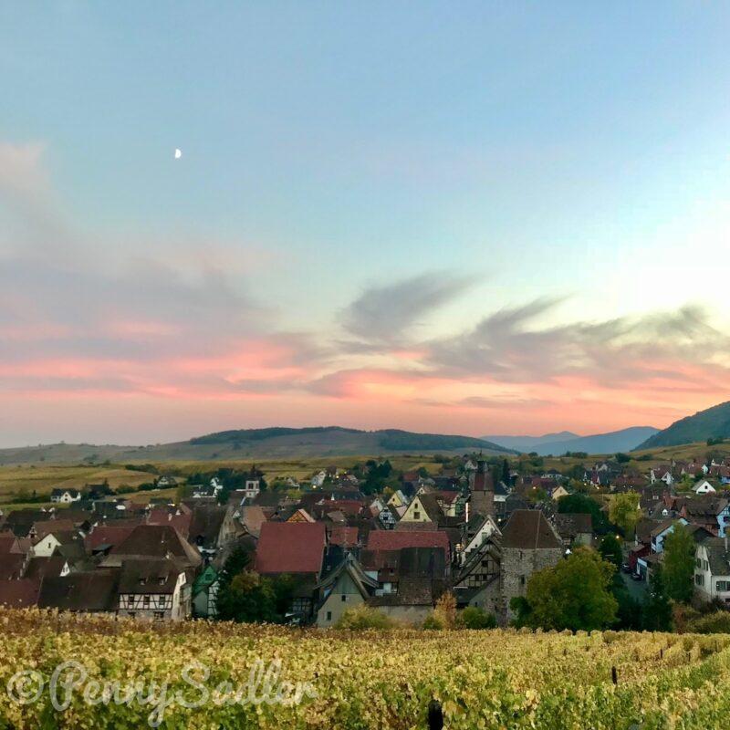 Schoenenberg Vineyards in Riquewihr, Alsace, France.