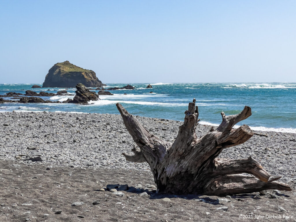 Beach with giant driftwood on sand