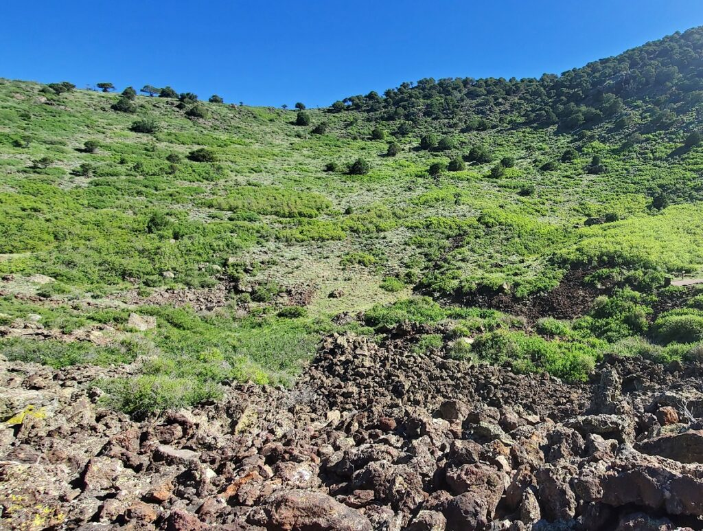 A view from inside the Capulin volcano on Crater Vent Trail, Capulin Volcano National Monument.