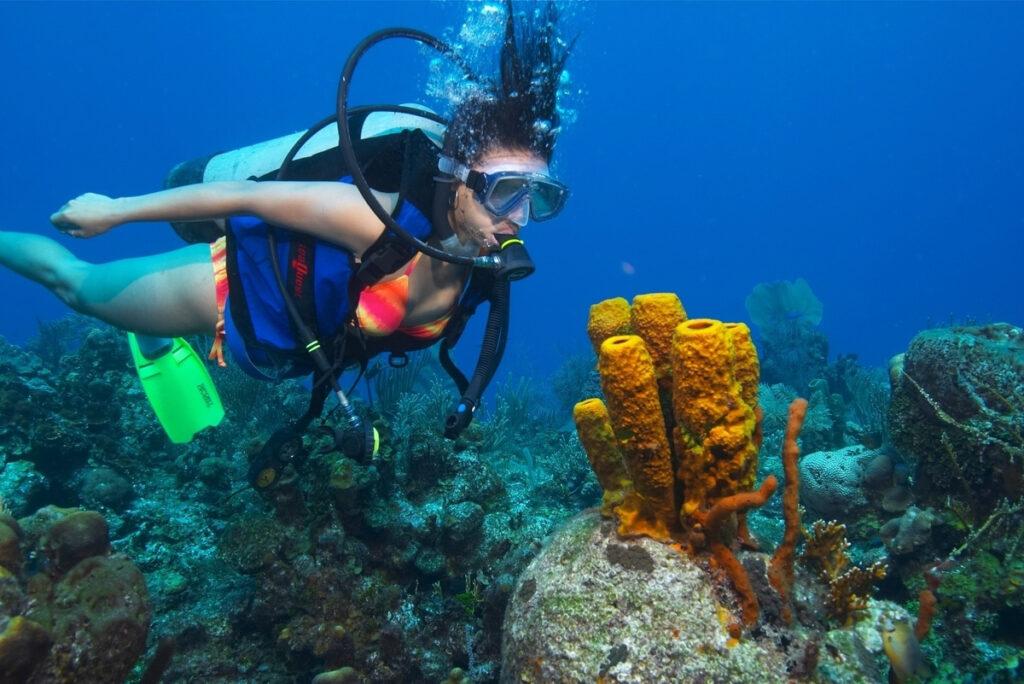 Woman scuba diving, Ramon's Village Resort, San Pedro, Belize.
