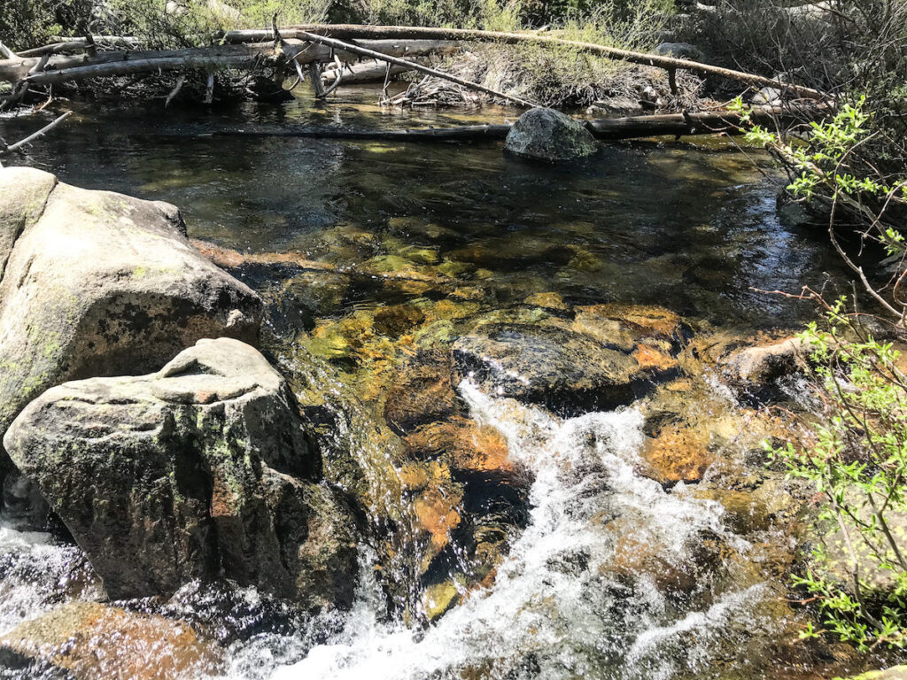 Yosemite Creek, Yosemite National Park.