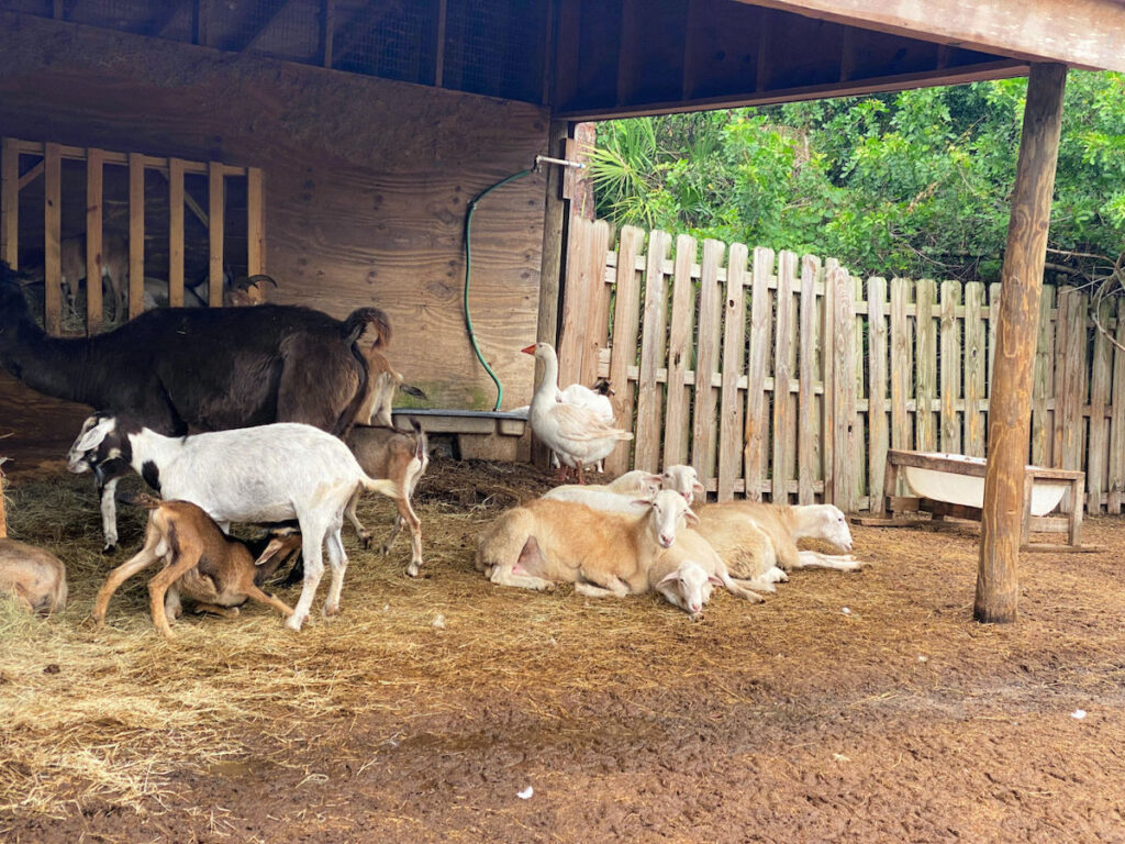 LaPorte Farms.