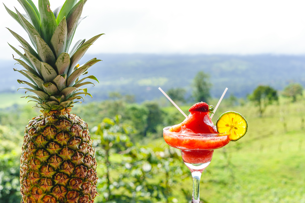 Cocktail glass with lemon and strawberry garnish next to a pineapple and with the forest in the background. Costa Rica gastronomy