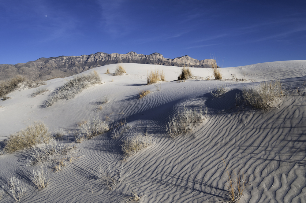 Salt Basin Dunes in Guadalupe Mountains National Park The salt basin dunes are made up of gypsum grains that form the stark white dunes in the western part of Guadalupe Mountains National Park.