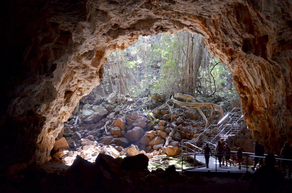Lava tubes at Undara Volcanic National Park in Queensland, Australia
