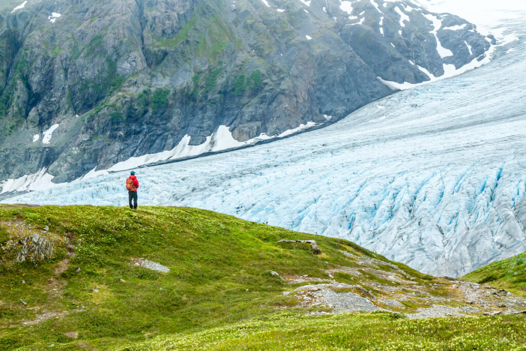 A man in a red jacket is gazing out over Exit Glacier in Alaska, USA. Overlooking the glacier from the Harding Icefield Trail.