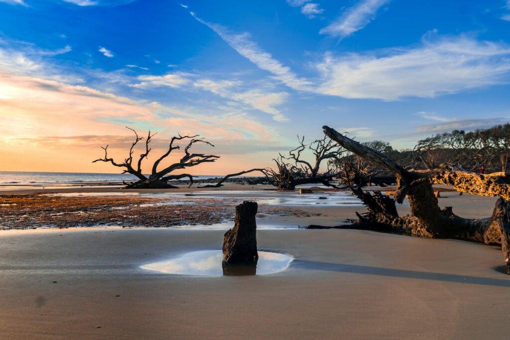 Sunrise view of Driftwood Beach in Jekyll Island, Georgia.