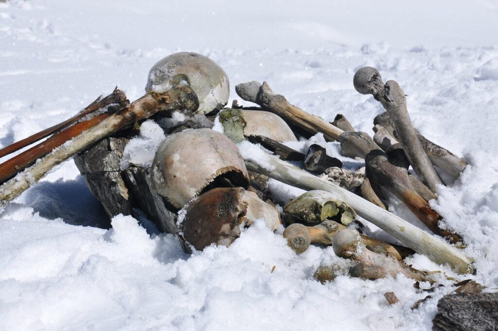 Skeletons at Lake of Skeletons.