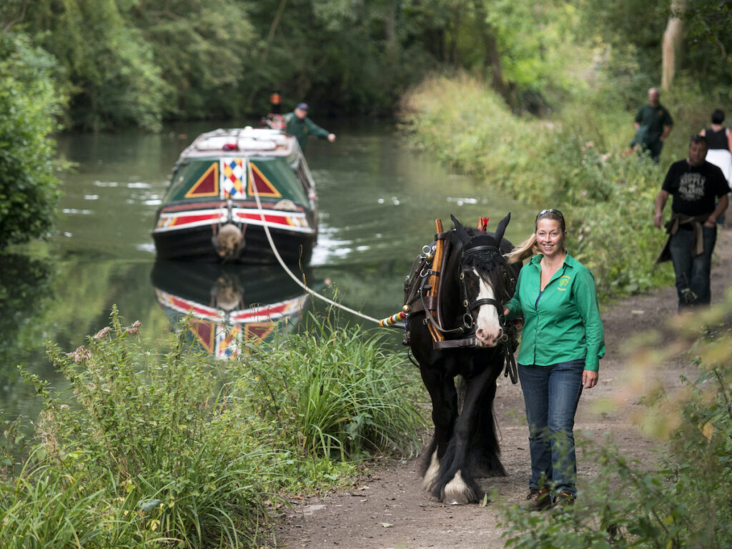 English narrow boat Birdswood, being pulled by a horse, on the Cromford Canal, near Matlock, Derbyshire, UK.