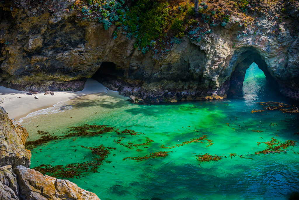 China Beach Point Lobos California State Reserve.