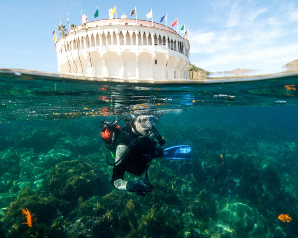 A Male Teenager Scuba Diving at Catalina Island, California .