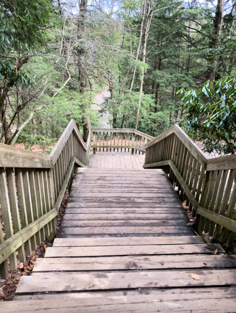 Stairs at Blackwater Falls State Park.