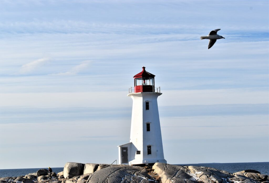 View of Peggy's Cove with lighthouse - Lobster Dinner with a View