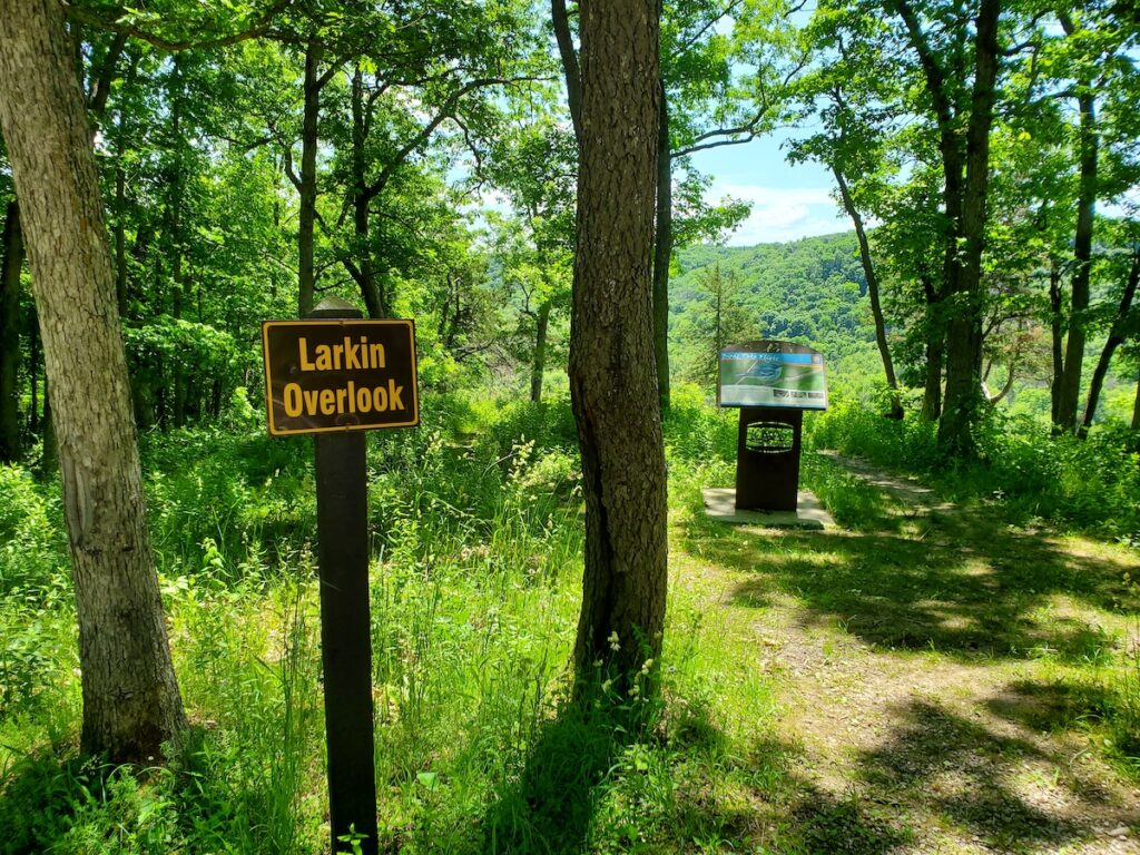 Larkin Overlook in Yellow River State Forest.