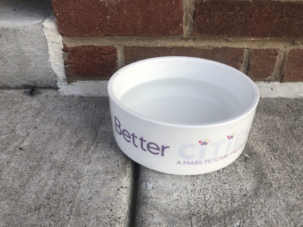 Water bowl sits on ground outside of local shop in support of dog-friendly neighborhood.