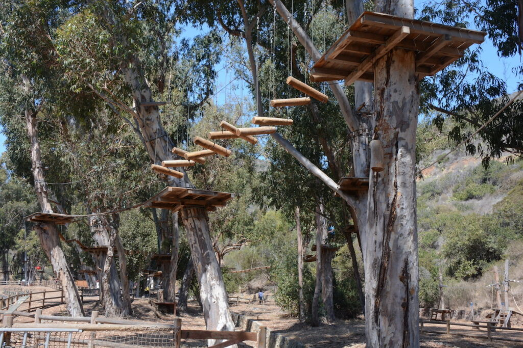 Aerial Adventure obstacles in the tree tops.