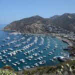 Catalina Island Harbor