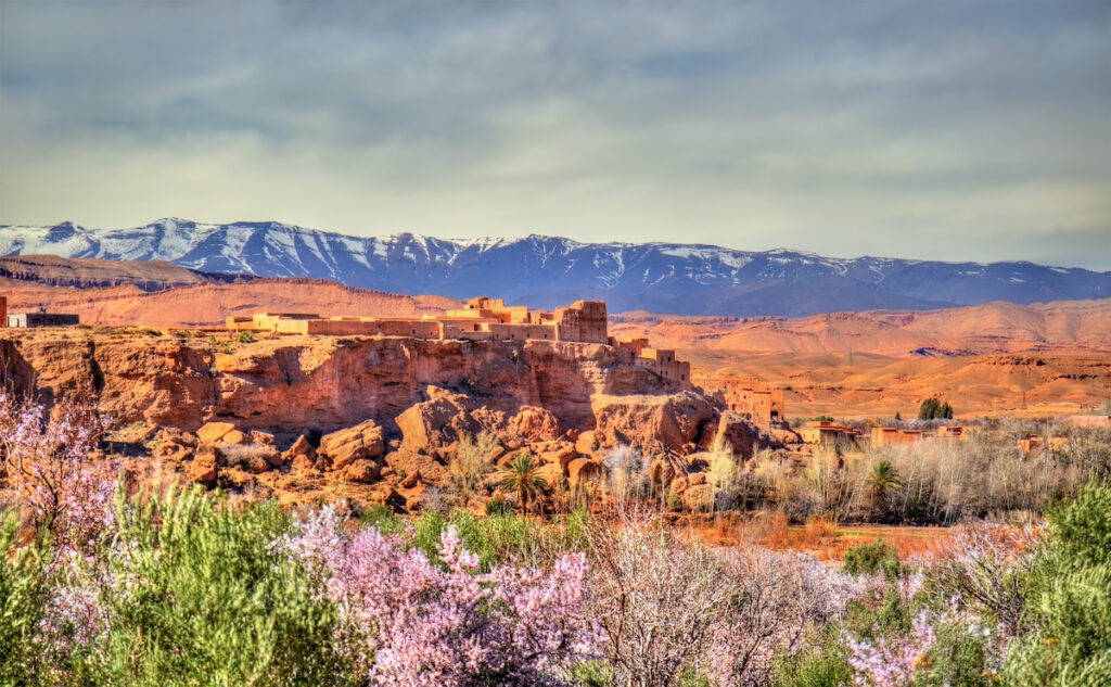 Valley of the Roses; High Atlas; Morocco