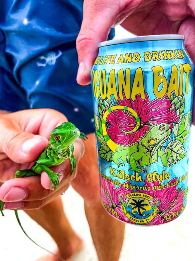 Iguana with Iguana Bait Beer