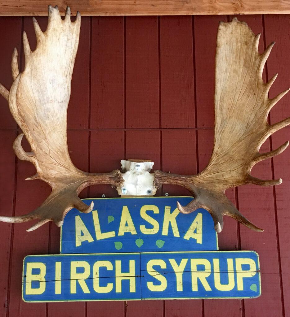 Moose antlers at Kahiltna Birchworks in Talkeetna, Alaska