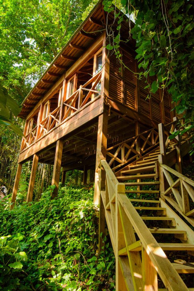 Kanopi House; San San, Jamaica